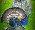 Wayne Hubbard turkey hunt